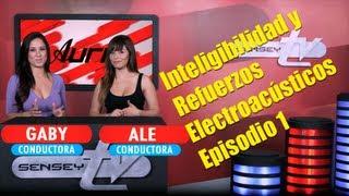 Inteligibilidad y Refuerzos Electro Acusticos, Cap