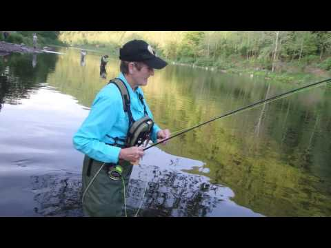 Fly Fishing Pine Creek at Slate Run #3