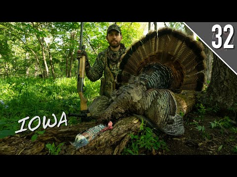 IOWA GOBBLER at 7 YARDS!!! (Public Land Turkey Hunting)