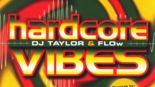 Dj Taylor & Flow - Hardcore Vibes (Short Mix) (2001)