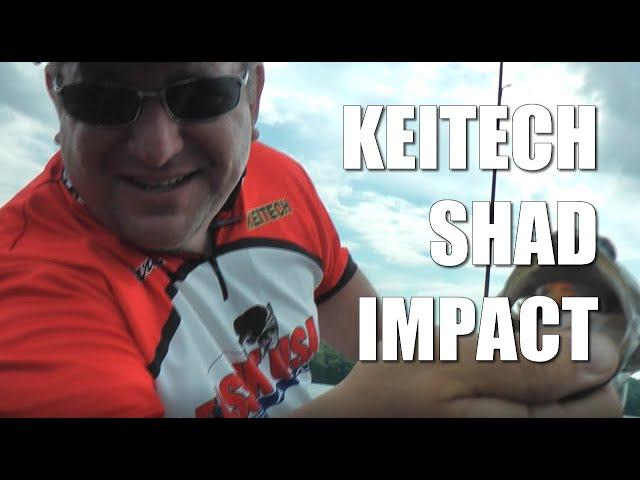 Keitech Shad Impact Fishing