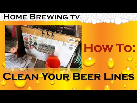 Beer Line Cleaning