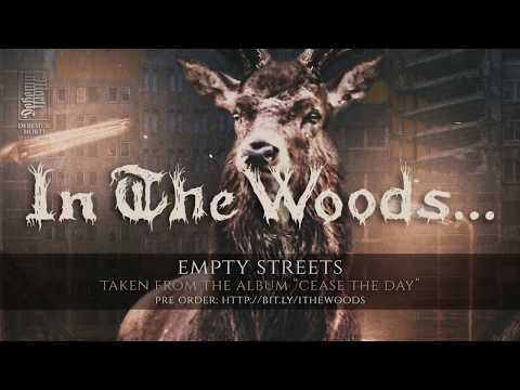 In the Woods... - Empty Streets Mp3
