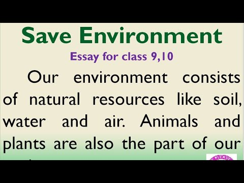 Essay of environment