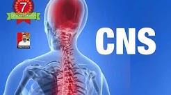 Централна нервна система - ЦНС - проблеми, симптоми, решения (Ясен Николов)