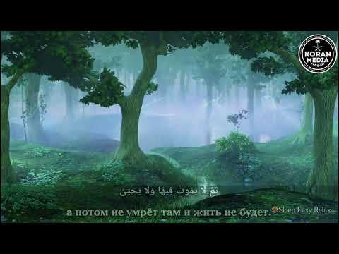 Чтец: Абдурахман Моссад  🎥 Сура: 87 А'ла