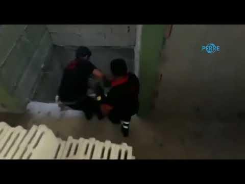 Besni'de Asansör Boşluğuna Düşen Köpek Kurtarıldı