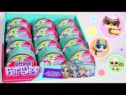 Opening A Full Case Of New LPS!  Littlest Pet Shop Blind Boxes