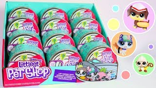 Opening A Full Case Of New LPS! || Littlest Pet Shop Blind Boxes