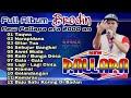 - Brodin new Palapa full album