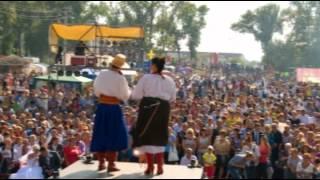 Свадьба в Малиновке-2012