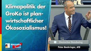 Klimapolitik der GroKo ist planwirtschaftlicher Ökosozialismus! - Peter Boehringer - AfD-Fraktion