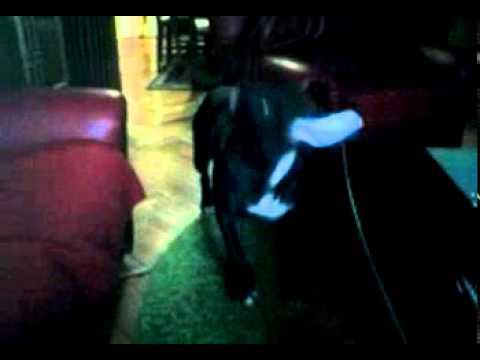Video - kiki.-0005.mp4