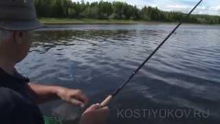 Рыбалка на северной Сосьве. Язь.
