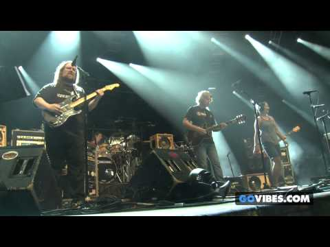 """Dark Star Orchestra performs """"Cats Under The Stars"""" at Gathering of the Vibes Music Festival 2014"""