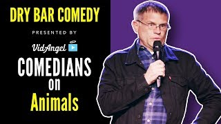 """Talking Animals"" (HUGE COMPILATION) - Dry Bar Comedy"