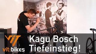 Simplon Kagu Bosch Uni 2019! - Vit:bikesTV 149