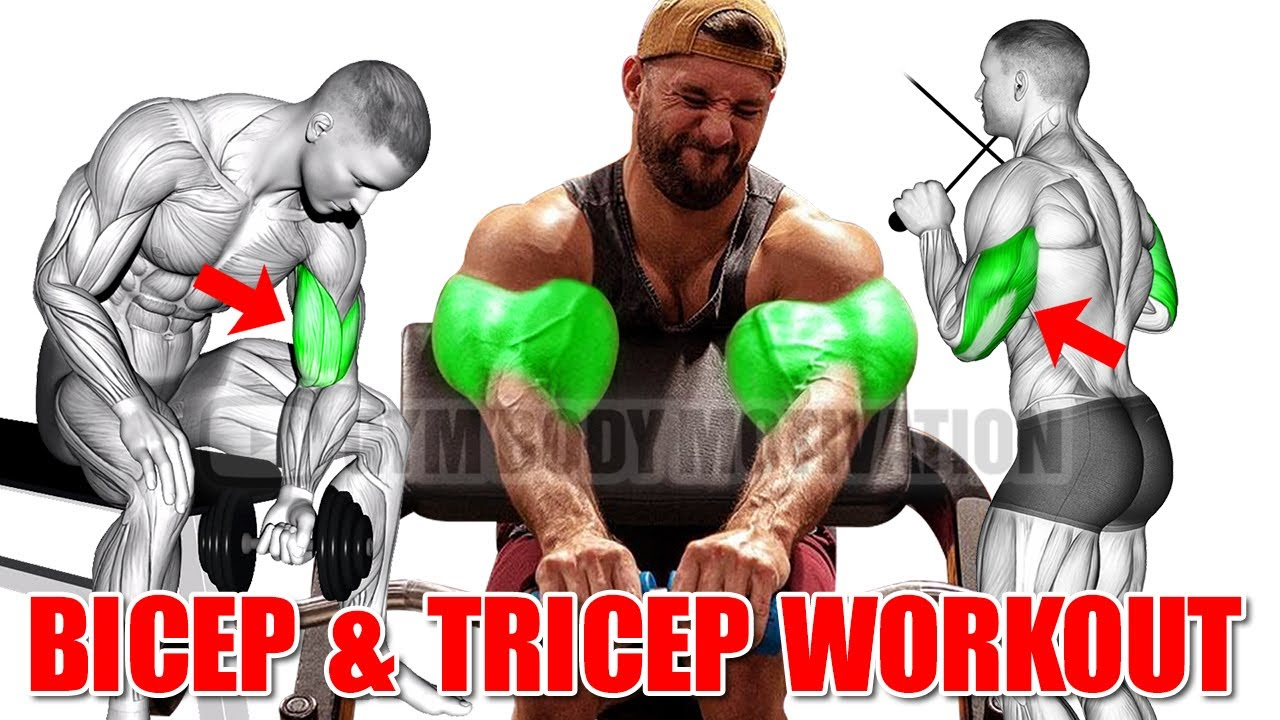 13 Best Bicep and Tricep Exercises for Bigger Arms - Gym Body Motivation