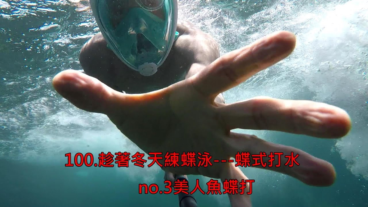 100.---3.美人魚蝶式打水/蝶式打水/趁著冬天練蝶泳
