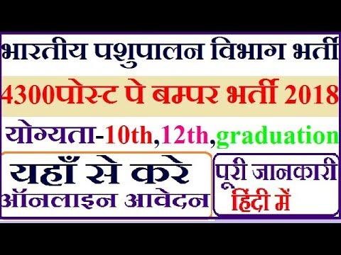 4300 पोस्टो पे बंफर भर्ती भारतीय पशुपालन विभाग 2018 ! Bhartiya Pashupalan  Vibhag Recruitment