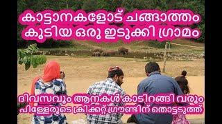 കാട്ടാനകളോട് ചങ്ങാത്തം കൂടിയ ഒരു ഇടുക്കി ഗ്രാമം | Wild Elephants friendly Idukki Village