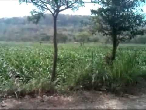 gending gugur gunung