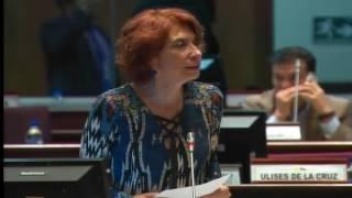 Sesión 431 del Pleno (09-01-2017)