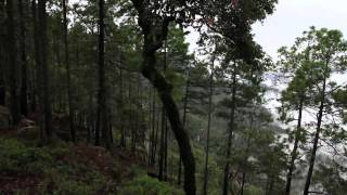 RUTA ATV DURANGO-MAZATLÁN 2012