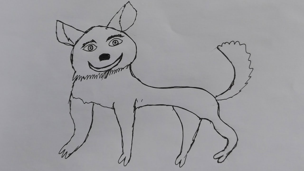 How to Draw a small dog-draw a realistic dog-draw a dog ...