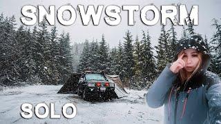 Solo Camping in Snowstorm! Jacĸery 1000 Solar Generator   Air Fryer