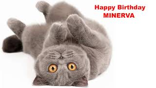 Minerva  Cats Gatos - Happy Birthday