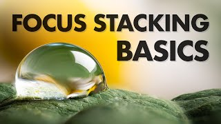 Focus Stacking Basics in Macro Photography
