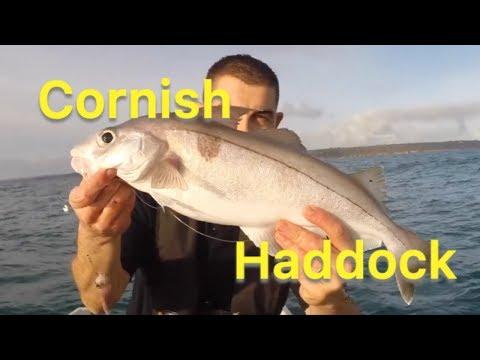 Haddock Fishing - Sea Fishing Tips For Beginners