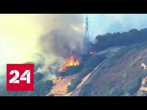 """Калифорния в огне: новый """"Терминатор"""" не покажут - Россия 24"""