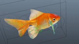 Рыбка риг+анимация