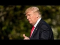 Dobbs: Trump's first 100 days successes are unmatched