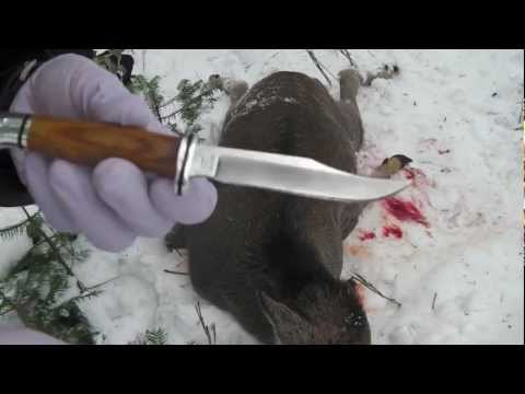 Deer Hunting Knives #68 / Buck Hunting Knife Triad