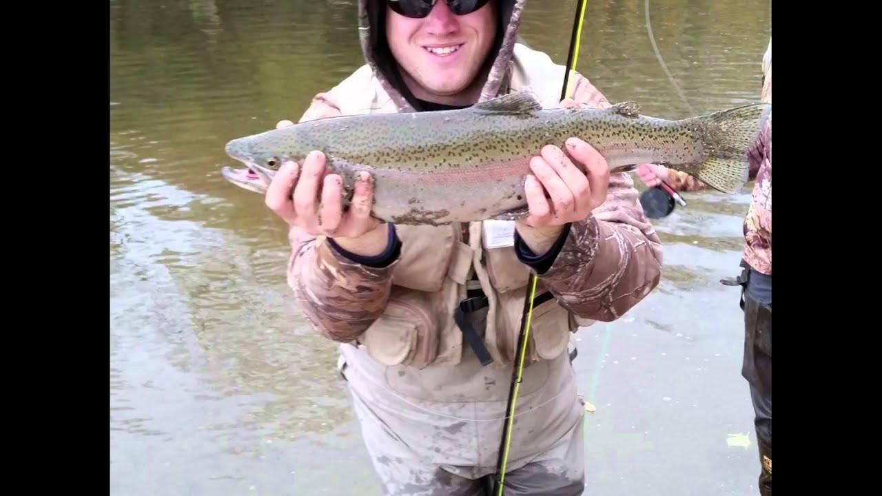 Erie pa steelhead fly fishing 10 31 2015 youtube for Erie pa steelhead fishing report
