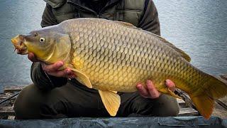 Фруктовые или Рыбные Flat feeder VS carpfishing Обзор палатки eastshark 038 Рыбалка 2021 ВЕСНА