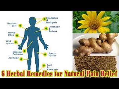 6 Herbal Remedies for Natural Pain Relief - Natural Health Cures