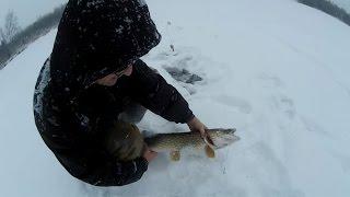 Ловля щуки на жерлицы по первому льду (видео-отчет) зимняя рыбалка 4 января 2016 на зимнюю жерлицу.