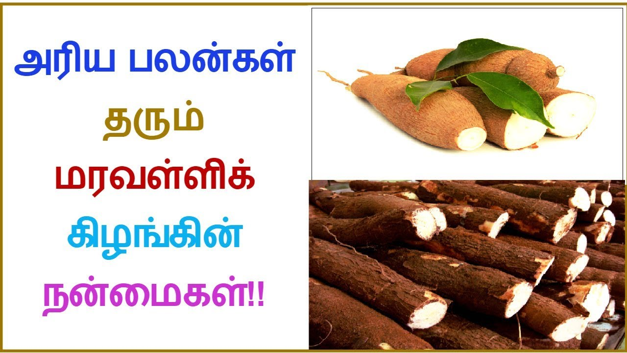 What is the Benefits of Tapioca | Tamil Dear
