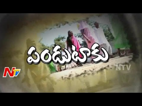 World Senior Citizens Day Special | Old Age Homes in India | Focus | Part 01