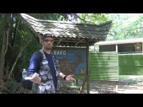 Travel Geek Short: Bako National Park (Sarawak, North Borneo, Malaysia) by Cyle O'Donnell