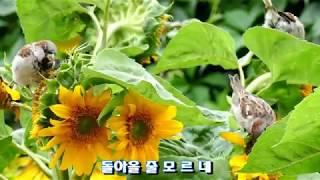 정재은-그리운 정(가사자막)