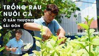 Hot boy trồng rau, nuôi cá trên sân thượng căn nhà Sài Gòn không phí một giọt nước nào