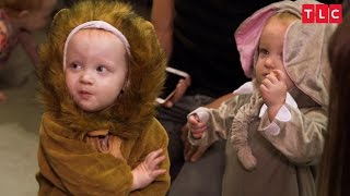 Video The Quints' Safari-Themed Halloween Costumes | OutDaughtered download MP3, 3GP, MP4, WEBM, AVI, FLV September 2018