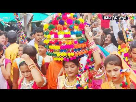 आपना देश मा आपनो राज/ विश्व आदिवासी दिवस 2019 बड़वानी की महारैली /Adiwasi Video Dance  4K