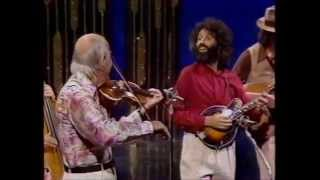 Stephane Grappelli And David Grisman