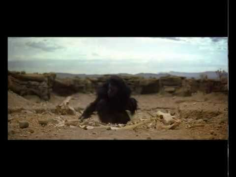 2001: Odisea en el Espacio - El Amanecer del Hombre (Fragmento)